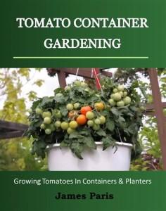 tom container garden
